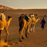 Viajes Yoga en el desierto de Marruecos