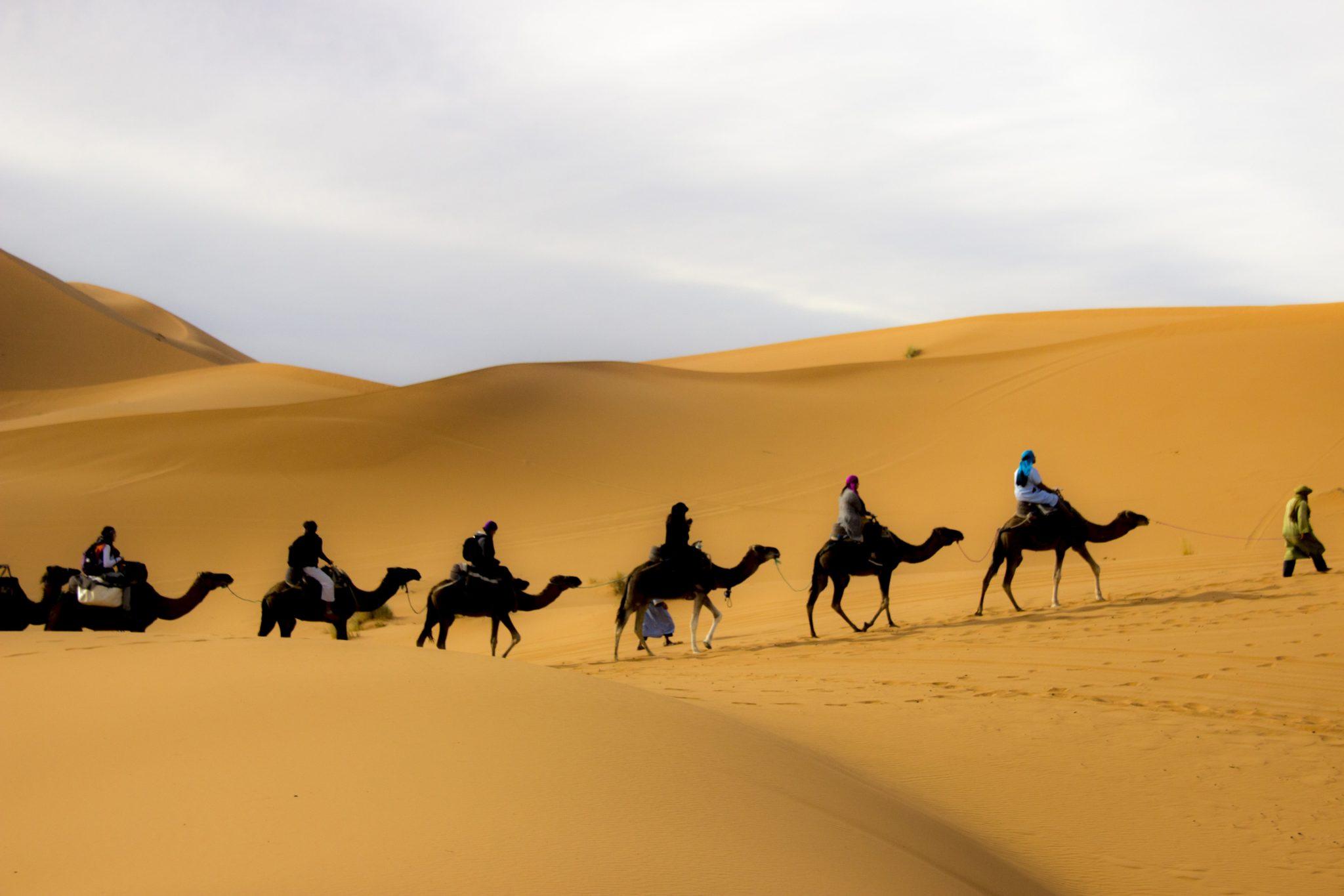 Expedición en camello por el desierto para realizar yoga