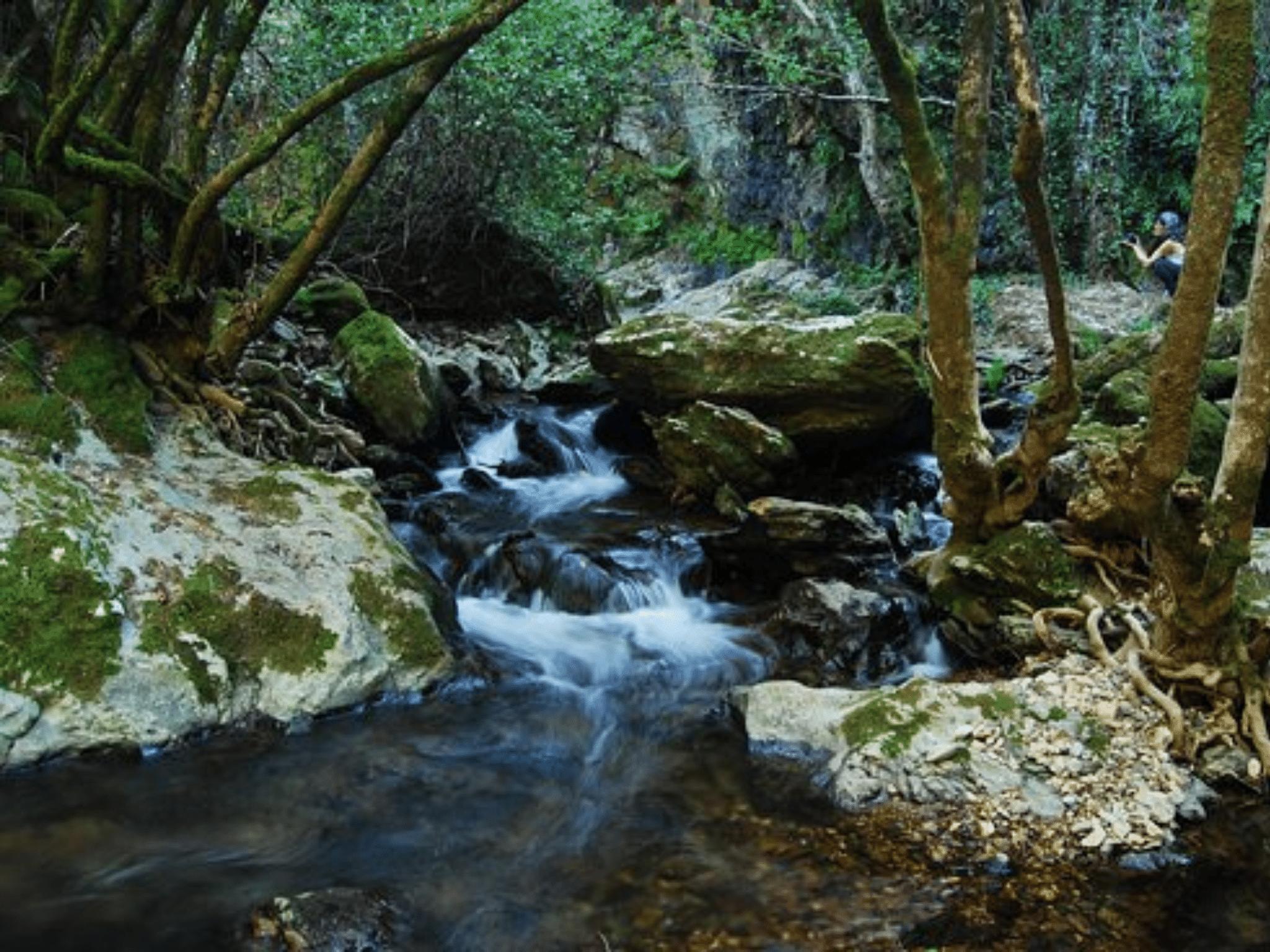 Ribera de Jabugo